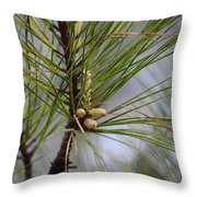 Misty Pines In Spring 2013 Throw Pillow