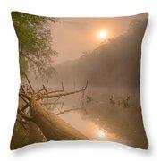 Misty Sun Throw Pillow