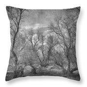 Misty Trees Tryptic Throw Pillow