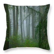 Misty Woodland Throw Pillow