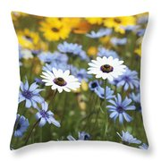 Mixed Daisies Throw Pillow