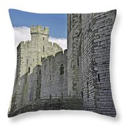 Moat And Bridge Throw Pillow