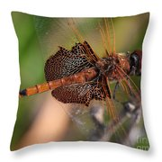 Mocha And Cream Dragonfly Profile Throw Pillow