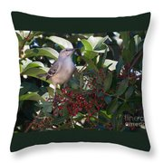 Mocking Bird And Berries Throw Pillow