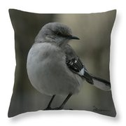 Mocking Bird Cuteness - Featured In Wildlife Group Throw Pillow