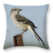Mocking Bird On A Metal Post Throw Pillow