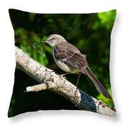 Mockingbird Throw Pillow