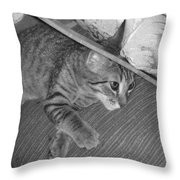 Model Kitten Throw Pillow