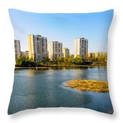 Modern Buildings Close To The Pond Throw Pillow