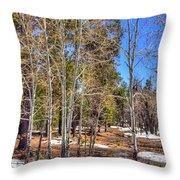 Mogollon Spring 1 Throw Pillow
