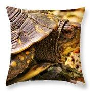 Mohammad Throw Pillow