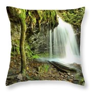 Mohawk Falls At Ricketts Glen Throw Pillow