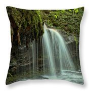 Mohawk Streams And Roots Throw Pillow