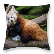 Mohu Eats Bamboo Throw Pillow