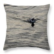 Moire Silk Water And A Long Tailed Duck Throw Pillow