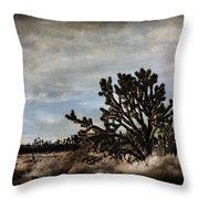 Mojave Desert Joshua Tree In Cima Throw Pillow
