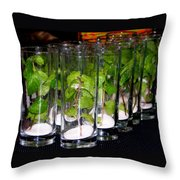 Mojitos In The Making Throw Pillow