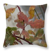 Molting Leaves  Throw Pillow