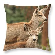 Mom And Junior Throw Pillow