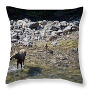 Mom And Kids At The Pool Throw Pillow