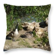 Mom Dad And Goslings Throw Pillow