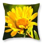 Moment In The Sun - Golden Flower - Northern California Throw Pillow