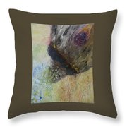Moment Of Creation Throw Pillow