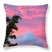Momentary Magnificence Throw Pillow