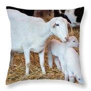 Momma And Newborns Throw Pillow