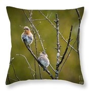 Momma Bluebird And Baby Throw Pillow