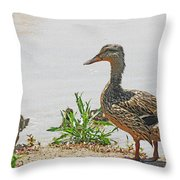Momma Duck And Baby With A Different View Throw Pillow