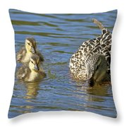 Momma Mallard And Her Ducklings Throw Pillow