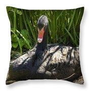 Momma Swan Throw Pillow