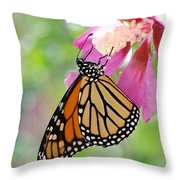 Monarch And Hibiscus No.2 Throw Pillow