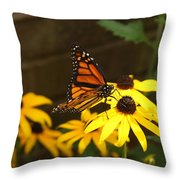 Monarch At Rest Throw Pillow
