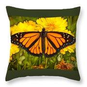 Monarch Batik Throw Pillow
