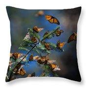 Monarch Butterflies Throw Pillow