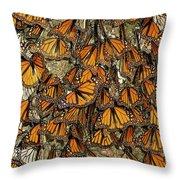 Monarch Butterflies Wintering Throw Pillow