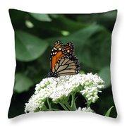 Monarch Butterfly 45 Throw Pillow