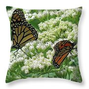 Monarch Butterfly 56 Throw Pillow
