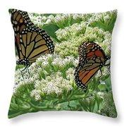 Monarch Butterfly 57 Throw Pillow