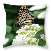 Monarch Butterfly 58 Throw Pillow