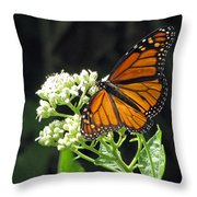 Monarch Butterfly 59 Throw Pillow