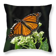 Monarch Butterfly 60 Throw Pillow