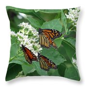 Monarch Butterfly 63 Throw Pillow