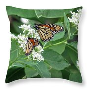 Monarch Butterfly 67 Throw Pillow