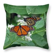 Monarch Butterfly 69 Throw Pillow