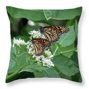 Monarch Butterfly 70 Throw Pillow