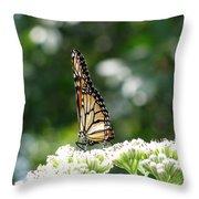 Monarch Butterfly 72 Throw Pillow