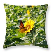 Monarch Butterfly And Guest Throw Pillow